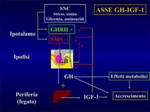 Asse-GH